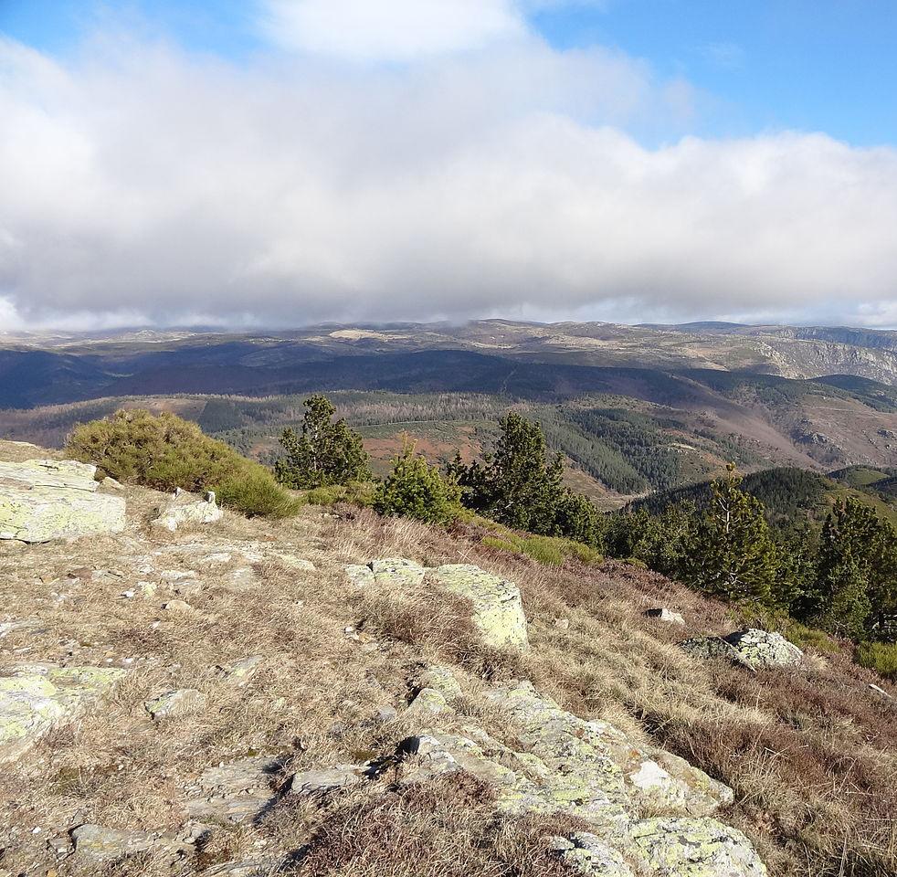 Le Mont Lozère et parc National des Cévennes